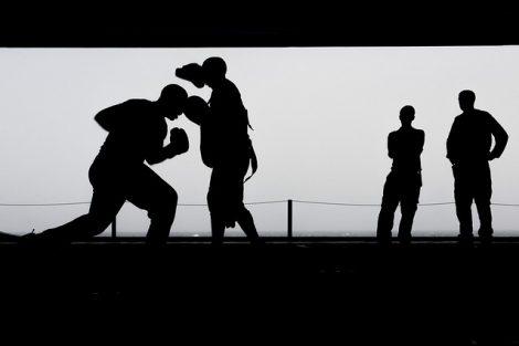 boks zawodowy