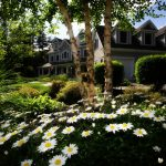 Relaks w ogrodzie - jak wypoczywać